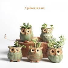 mini plants 5pc set cartoon owl shaped flower pot for succulents fleshy plants