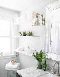 glossy pure white furniture with chic fresh bathroom plant decor
