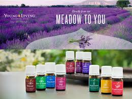 Design Business From Home How To Make Money With Your Young Living Business From Home U2014 The