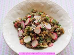 cuisiner les lentilles les gourmandes astucieuses cuisine végétarienne bio saine et