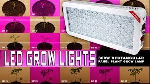 1000 watt led grow light reviews top 5 best 300 watt led grow light reviews buyer s guide