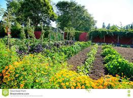 france gardens of the castle of villandry the kitchen garden
