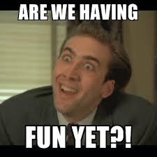 Have Fun Meme - the subtle art of having fun tell