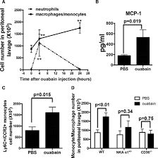 cardiotonic steroids stimulate macrophage inflammatory responses