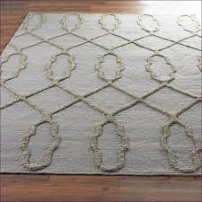 Houston Area Rugs Furniture Magnificent Yellow And Blue Colored Area Rugs Coral