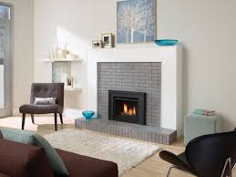 Fireplace Inserts Seattle by Idea Gallery Red Hearth U0026 Home