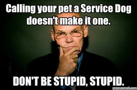 T Dog Memes - your pet a service dog doesn t make it one