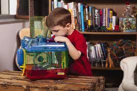 Petsmart Hamster Cages Petsmart U0027s U201cpets In The Classroom U201d Grants Make Lessons Crawl