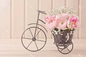 Chic Flower Ranunculus Flowers In A Bicycle Vase Stock Photo Picture And