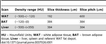 invasive quantification white brown adipose tissues