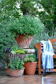 7 steps to planting a herb garden sa garden and home