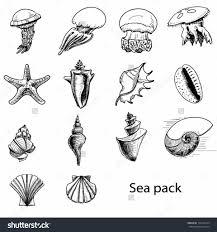 sea animals drawing coloring pages sea animals ocean coloring