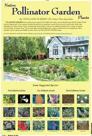 new jersey native plants native pollinator garden plants new jersey native plants