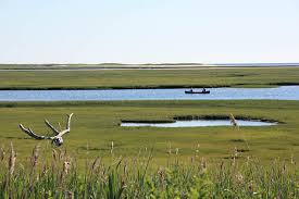 The Marsh Restaurant Cape Cod - spotlight cape cod national seashore massachusetts recreation gov