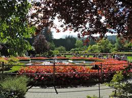 butchart gardens u2013 a must visit in victoria b c