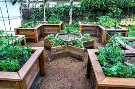 Raised Gardens Ideas Raised Backyard Garden Raised Garden Beds Backyard Raised Garden