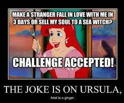 Mermaid Meme - little mermaid meme by phoenix9424 memedroid