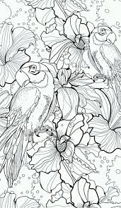262 best bird coloring pages images on pinterest coloring books