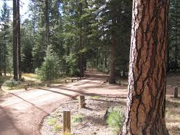 Haskins Valley Campground Apache Sitgreaves National Forests Recreation