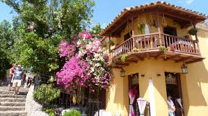 free images tree architecture villa flower home romantic