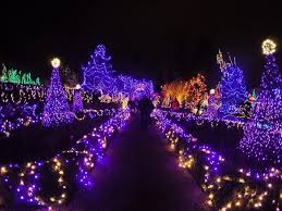 vancouver christmas light maze where to see bc s festive holiday lights