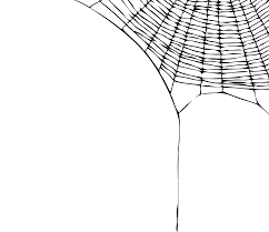 halloween transparent background clipart halloween spider web png u2013 festival collections