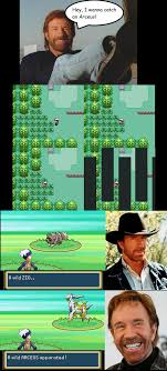 Chuck Norris Pokemon Memes - chuck norris pokemon hunt by sforza1508 on deviantart