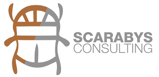 social capital development u0026 community building scarabys