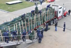 tree delivery coast guard all