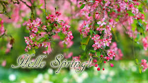 greeting cards for every day welcome spring 10 amazing pictures