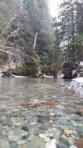 blog u2014 cedar creek designs