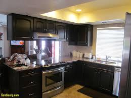 Redo Kitchen Cabinets by Beautiful Remodel Kitchen Cabinets Kitchenzo Com