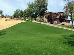 Lakeview Lawn And Landscape fake turf lakeview california landscape design small front yard