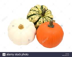 small pumpkins three small pumpkins orange white and green striped gourds