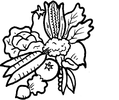 tomatos fruit coloring pages color udin