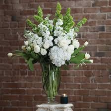 bells of ireland flower blessings in goodyear az thompson s flower shop