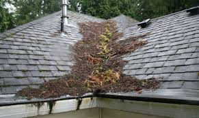roof how to fix roof leak endearing how to repair roof leak