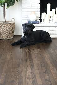 refinishing wood floors with dogs hardwood pet stains laferida