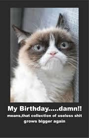 Birthday Meme Cat - top funny birthday meme cats daily funny memes
