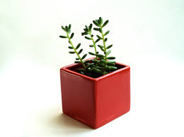Small Red Vases Accessories Engaging Table Centerpiece Accessories And Decoration