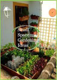Garden Ideas For Small Spaces 57 Best Small Space Garden Ideas Images On Pinterest Gardening