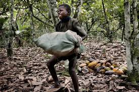 lawsuit your candy bar was made by child slaves