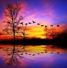 imágenes asombrosas naturaleza 60 imágenes de naturaleza asombrosa sunset scenery and reflection
