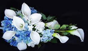 blue lilies blue hydrangeas mixed with white callas cascading bouquet