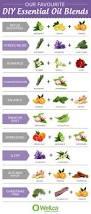 diy diy essential oil recipes room design plan best under diy