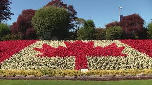 Canada Flag Colors Canadian Flag Made From Flowers Video Clip 787967 Pond5