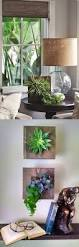 13 best wall planters images on pinterest plants gardening and