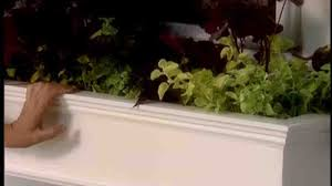 diy window flower boxes video how to build a window box for your home martha stewart