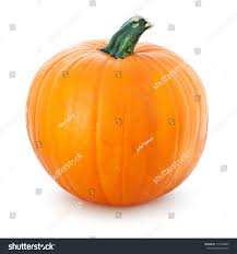halloween types background big yellow pumpkin on white background stock photo 112949809