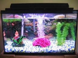 fish tanks designs ideas realistic fish tank decoration ideas